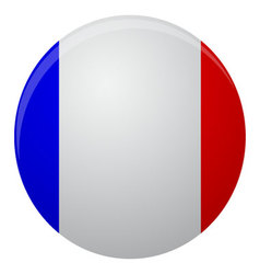France flag icon flat vector image vector image