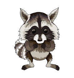 cute racoon icon on white background vector image