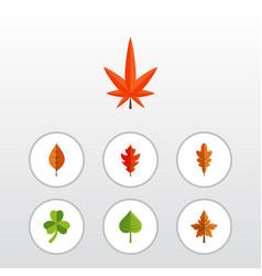 Flat icon foliage set aspen alder leaf and vector