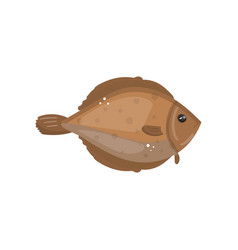 flounder fish animal fresh seafood cartoon vector image