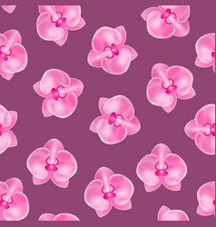 realistic detailed 3d flower orchid seamless vector image
