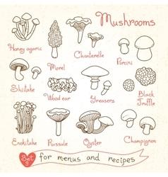 Set drawings mushrooms for design menus vector