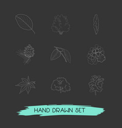 set of flora icons line style symbols with poplar vector image