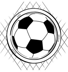 soccer football sketch on white vector image
