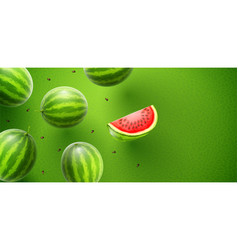 watermelon sweet fruits vector image