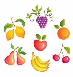 appetizing fruits vector image vector image