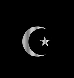 Symbol of Islam vector image