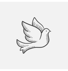 Wedding dove sketch icon vector