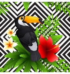 tropical pattern with toucan and hibiscus vector image vector image