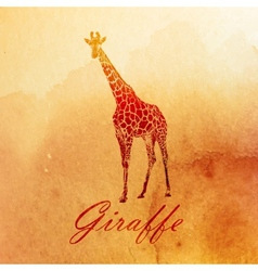 vintage of a watercolor giraffe on the old paper vector image vector image