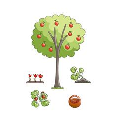flat gardening symbols set vector image