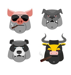 Set of angry animals Head of a Pig and bull Bad vector image vector image