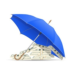 concept money under umbrella vector image