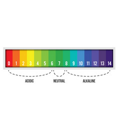 Creative of ph scale value vector
