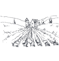 Hand drawn a vineyard vector