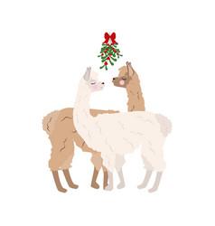 Llama under mistletoe vector