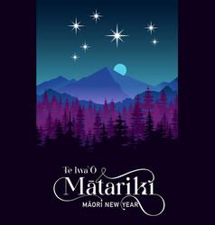 Nz matariki maori new year vector