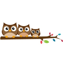 Owls Family sat on a tree branch vector