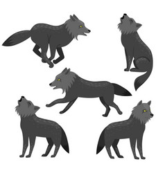 set wolves isolated on a white background vector image