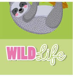 Sloth wildlife animal cartoon vector