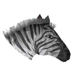 Zebra abstract design vector