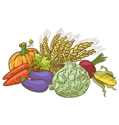 Doodle harvesting vegetables vector