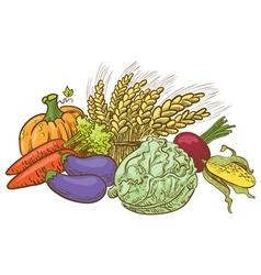 Doodle harvesting vegetables vector