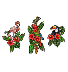 flamingo parrot toucan embroidery patches vector image