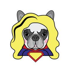 Girls room kids style cute bulldog superwoman vector