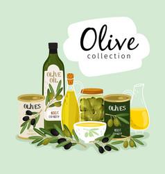 olives and olive oil natural olives oils glass vector image