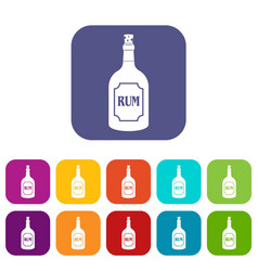 Rum icons set flat vector