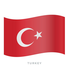 turkey waving flag icon vector image