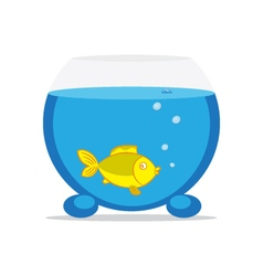 an aquarium with fish vector image vector image