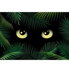 Eyes in the dark vector image