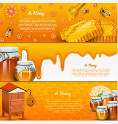 honey or natural farm product beekeeping or vector image