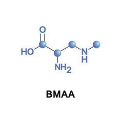 Beta-methylamino-l-alanine or bmaa vector