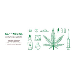 cannabidiol health benefits background vector image