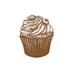 Cupcake with blueberry in hand-drawn style vector