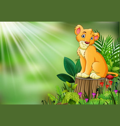 cute a lion sitting on tree stump with green leave vector image