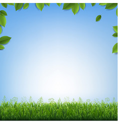 Green leaves frame with green grass with blue vector