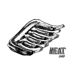 grilled meat bbq pork or beef ribs barbecue food vector image