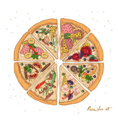 set of slices of different pizza types with vector image