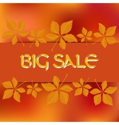 Stock card template for autumn sale vector image