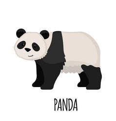 cute panda in flat style vector image