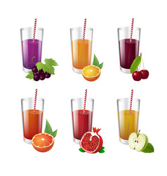 collection of realistic glasses with tasty juice vector image