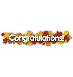 Congratulations banner with maple leaves vector