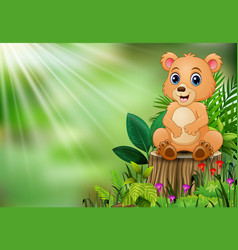 Cute a baby bear sitting on tree stump with green vector