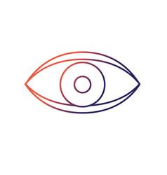 eye human anaomy to optical graphic vector image
