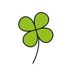 natural clover plant with leaves design vector image