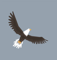 north american bald eagle character flying in the vector image